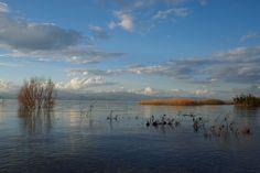 Israel - Sea of Galilee | Flickr - Photo Sharing!