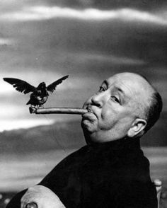 Alfred Hitchcock, black and white, bird