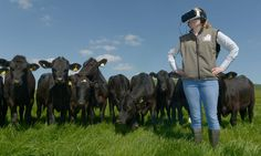 McDonald's takes virtual tours of actual supplier farms on the road - http://smartemail1.eu/fanclub/mcdonalds-takes-virtual-tours-of-actual-supplier-farms-on-the-road/  To read more on this topic http://smartemail1.eu/fanclub