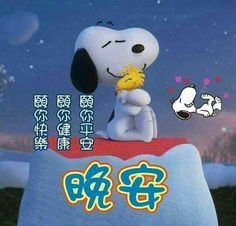 Good Night, Snoopy, Fictional Characters, Nighty Night, Have A Good Night