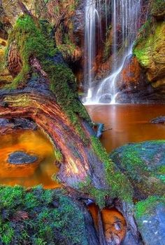 Stunning Picz: Roughting Linn Waterfall Northumberland, England