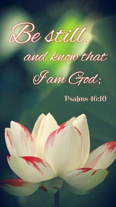 Psalms  46:10 Be still, and know that I am God: I will be exalted among the heathen, I will be exalted in the earth.