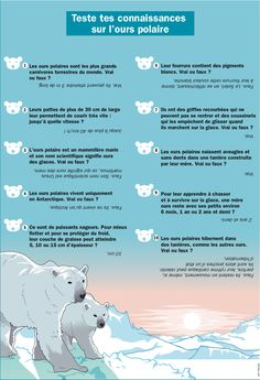 Fiche exposés : Teste tes connaissances sur l'ours polaire Social Studies, Geo, Canada, Information, Education, Maths, Montessori, Projects, Brain