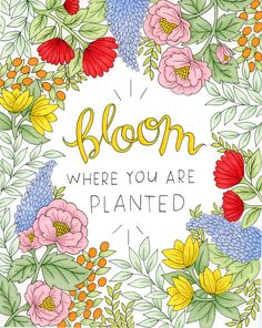 """""""Bloom Where You are Planted"""" print // Floral Print // Hand-drawn floral print Happy Pop, Handwritten Type, Image Deco, Bloom Where You Are Planted, Smash Book, Quote Prints, Nature Photography, Photography Filters, Flower Art"""