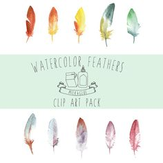Milk and Glue  Watercolor Feather Clip Art Pack by MilkandGlue, $5.00