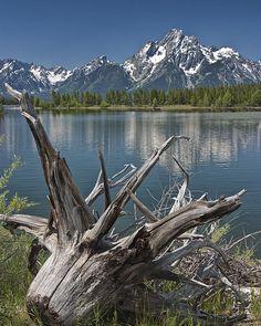 ✯ Lewis Lake At Yellowstone National Park