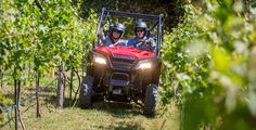 New 2016 Honda Pioneer 500 ATVs For Sale in Wisconsin. 2016 Honda Pioneer 500, Brand NEW! Special INCLUDES Freight and Setup** The Pioneer 500 is a brilliant concept: Like a full-sized side-by-side, it lets you take a passenger along and has the off-road capability to get you where you need to go. But the Pioneer 500 is a new take on the SxS formula: it s narrow, fits on tight trails, is fun to drive and easy to load into a full-size truck bed. But you still get a full-sized list of…