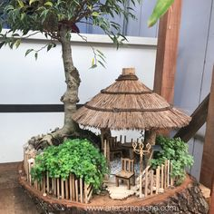 Saftig und Bonsai bei Ceasa Campinas - You are in the right place about Miniature Garden themes Here we offer you the most beautiful pictures about the Minia Fairy Tree Houses, Fairy Garden Houses, Gnome Garden, Garden Crafts, Garden Projects, Garden Ideas, Fairy Garden Furniture, Mini Fairy Garden, Fairy Garden Accessories
