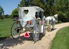 Engagement proposal idea. Rent a white carriage & horse, decorate it, take it to her home or business with the ring. Sure to impress and delight!