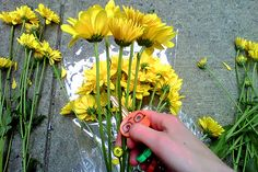 Give flowers to strangers