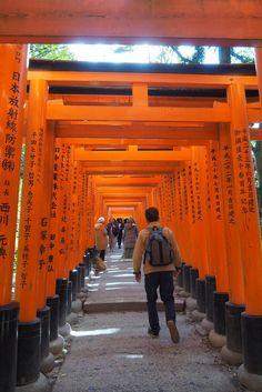 Osaka, Kyoto, Fushimi Inari Taisha, Travel, Viajes, Orange Door, Buddhism, Destinations, Traveling
