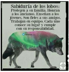 Comencemos a formar nuestra propia manada Wolf Quotes, Animal Quotes, Thing 1, Spanish Quotes, Sentences, Life Lessons, Just In Case, Life Quotes, Mindfulness