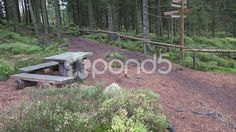 4k Hiking path restplace pan in mountain range Harz autumn forest - Stock Footage | by Beckhusen