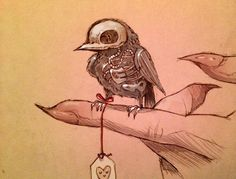 Sketches by Chiara Bautista. I think the little skeleton bird would be cute as tattoo :)