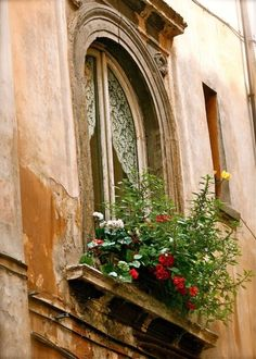 Ancient windowbox