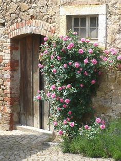 Back Gardens, Outdoor Gardens, Rosen Beet, Espalier, Portal, Pergola, My Secret Garden, Life Pictures, Garden Planning