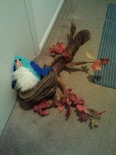 Exploding bird for Shrek the Musical. The full puppet set is available for rent! Email me at puppetbuilder123@yahoo.com