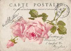 Carte postale rose Digital collage Free for personal use Vintage Labels, Vintage Ephemera, Vintage Cards, Vintage Paper, Vintage Postcards, Decoupage Vintage, Decoupage Paper, Vintage Flower Prints, Vintage Flowers