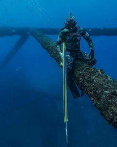 Home Aquarium, Underwater Photography, Snorkeling, Scuba Diving, Live Life, Free Dive, Things To Come, Explore, Elves