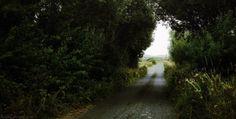 IGUALS AMB DIFERÈNCIA | Seguint les passes de Joyce, m'he topat amb uns quants dublinesos (qui diu dublinesos, diu irlandesos), tots amb el mateix tarannà: alegre, distès, potser conformista, sempre amical, gentil i hospitalari. Em sorprèn la terra i em sorprenen ells, que tiren endavant sense mirar gaire el retrovisor dels conflictes històrics i la crisi més recent. [...]