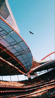 Benfica, Estádio da Luz, Águia Vitória