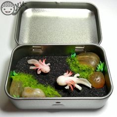Details: - Pond base - Axolotl handmade with polymer clay. Axolotl pond Before Resin Fimo Kawaii, Polymer Clay Kawaii, Polymer Clay Charms, Polymer Clay Kunst, Polymer Clay Projects, Polymer Clay Creations, Axolotl, Diy Resin Crafts, Diy Clay