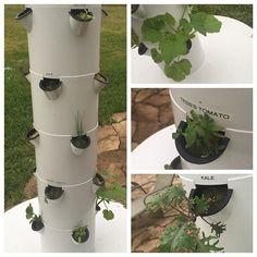 Grow Vegetables, Fruits & Herbs | Aeroponic Tower Garden Vertical Garden
