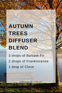 5 Must-Use Diffuser Blends for the Fall Season: Autumn Trees 3 drops of Balsam Fir Essential Oil 2 drops of Frankincense Essential Oil 1 drop of Clove Essential Oil