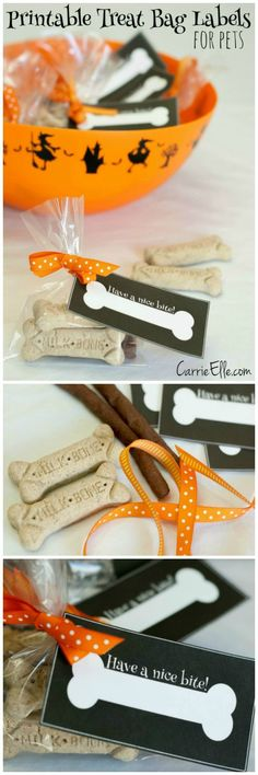 Make one special photo charms for your pets, compatible with your Pandora bracelets. Get your dog in on the Halloween fun! Make these cute printable treat bag labels for your four-legged trick-or-treaters. Halloween Goodies, Dog Halloween, Holidays Halloween, Halloween Treats, Happy Halloween, Halloween Party, Homemade Dog Treats, Pet Treats, Dog Treat Recipes