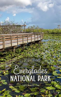 The Everglades makes a perfect one day destination if you are already in the area (visiting Miami or Key West). With one day, here are the best things to do and the best way to manage your time. Scenic drives, airboat rides, and short hikes are great ways to explore the park. #everglades #florida #nationalparks #adventuretravel