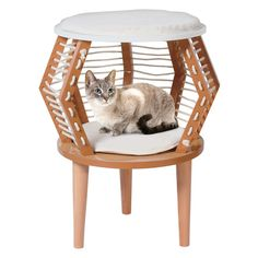 Your cat will love perching and resting on the Penn Plax CatWalk Contemporary Decor Cat Perch. This unique piece is made with MDF wood and woven rope with a light brown lacquer finish. It doubles as a side table with an enclosed resting area for your cat. Contemporary Decorative Pillows, Contemporary End Tables, Contemporary Interior Design, Interior Designing, Contemporary Bedroom, Modern Interior, Heated Cat Bed, Contemporary Kitchen Cabinets, Cat Perch