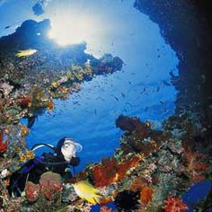 Diving at Tulamben Bay, in Bali, Indonesia : wreck diving on the USAT Liberty shipwreck http://mydivingholidays.com