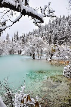 Beautiful winter (China)