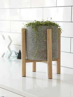 Christo series small planter with timber legs This simple and modern plant stand made inspired by Mid Century design would be a perfect addition to house your much loved indoor plant. Also suitable for outdoor use. Just need to re-varnish once a year to maintain the beauty of the oak.