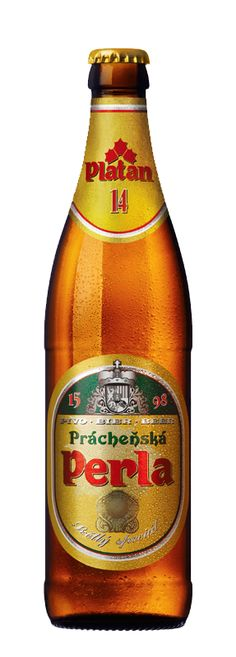 Prácheňská Perla - This beer represents a real pearl among special lagers born in the historic region of Prácheňsko. It is characterised by aromatic bitterness, a rich head, golden colour and strong zest. All these characteristics guarantee an exclusive gourmet experience.