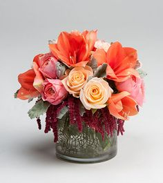 C37 Blushing Blooms - A beautiful collection of amaryllis, roses, dusty miller and amaranthus in a simple cylinder vase. #robertsonsflowers #fallflowers #halloween #Thanksgiving