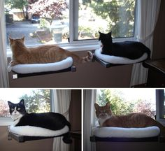 DIY Cat Window Perches.