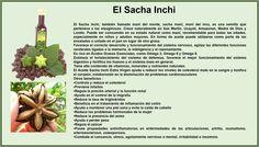 Información sobre los beneficios de Sacha Inchi Super Foods, Omega, Survival, Vegetables, Healthy Menu, Chilis, Health And Beauty, Natural Remedies, Herbs