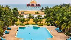 Why Do People Love to Visit Beach Resorts at Mahabalipuram? Heritage Hotel, Why Do People, Us Beaches, Beach Resorts, Luxury, Outdoor Decor, Modern, Trendy Tree