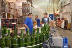 Fresno State wine bottling setup
