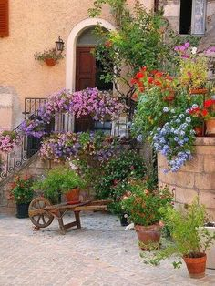 Tuscany.  I want my front porch to have flower pots full of flowers.