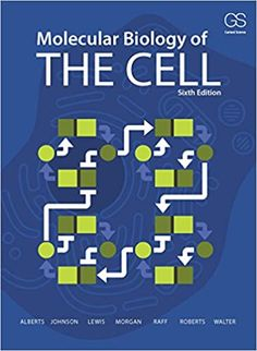 Molecular Biology of the Cell 6th Edition by Bruce Alberts  ISBN-13:9780815344322 (978-0-8153-4432-2)ISBN-10:0815344325 (0-8153-4432-5)  #Textbook #University #College#biology #science #chemistry #nature #neet #biologia #physics #microbiology #biotechnology #research #medical #medicine #bio #education #wildlife #biochemistry #scientist #laboratory #zoology #dna #lab #aiims #study #studygram #microscopy #biotech #naturephotography #microscope #doctor#Cell #Molecular #Alberts Biology Textbook, Cell Biology, Cell Junction, Alexander Johnson, Professor, Molecular Genetics, John Wilson, Dna Replication, Future Research