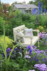 COTTAGE GARDEN........with the cottage out back......love it...and the bench......