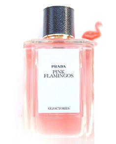 Prada Olfactories Pink Flamingos