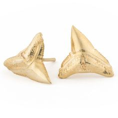 Tideline Studs - Shark Tooth | Kate Davis Jewelry