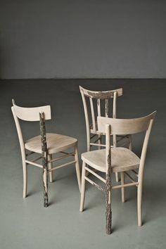 Deze stoelen komen rechtstreeks van de boom.