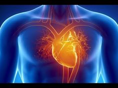 The heart is a fascinating organ that has its own 'life', generating an incredible energy that keeps us in touch with others and the whole universe. Homemade Facial Mask, Homemade Facials, Heart Songs, Life Extension, Train Your Brain, Human Heart, Health Eating, Heart Health, Better Love