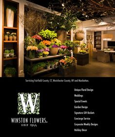 I love the simple repetition in the shelves-- 1 item, 3 items, 2 items and the abundant colorful floral display. Flower Bar, Flower Room, Flower Shops, Flower Shop Design, Floral Design, Florist Shop Interior, Flower Shop Interiors, Winston Flowers, Flower Studio
