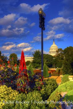 Observatory of Flowers outside the US Capitol, Washington DC