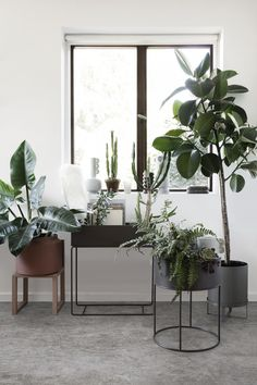 Elegant plant box in by ferm LIVING can be used for everything from plants to books all around the house or as a divider in a larger room. See more online Interior Design Trends, Interior Design Minimalist, Design Ideas, Interior Design Plants, Plant Design, Interior Inspiration, Interior Decorating, Casa Loft, Salons Cosy